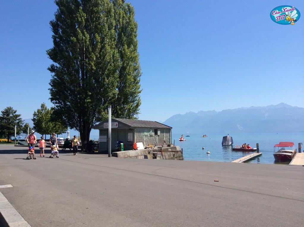 Chọn học ngành gì dễ dàng và thuận lợi nhất khi du học Thụy Sỹ?