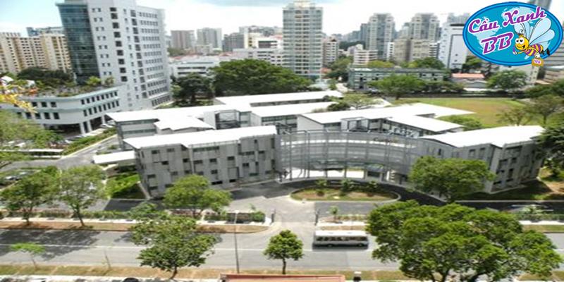 Chọn trường Curtin Singapore, trường top và có học bổng cao