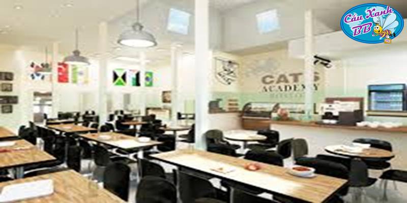 Du học Mỹ, chi phí gần bằng không với các suất Học bổng 100% du học phổ thông, trường Cats Academy Boston, miễn hoàn toàn phí khoá học trại hè tại Boston