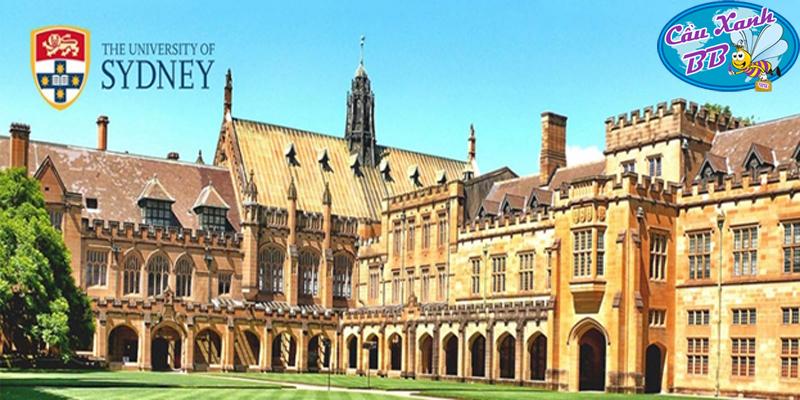 Rèn luyện và phát triển tại trường đại học đầu tiên của Úc, nhận tấm bằng danh giá của Đại học Syney