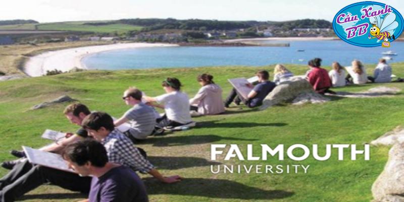 Đại học Falmouth, sự lựa chọn tuyệt vời khi du học ngành thiết kế, truyền thông và trình diễn tại Anh Quốc