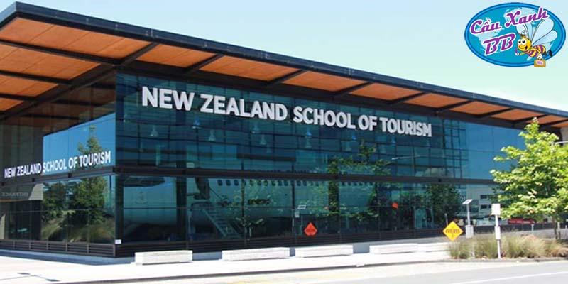 New Zealand School of Tourism – lựa chọn cho sinh viên ngành hàng không, du lịch