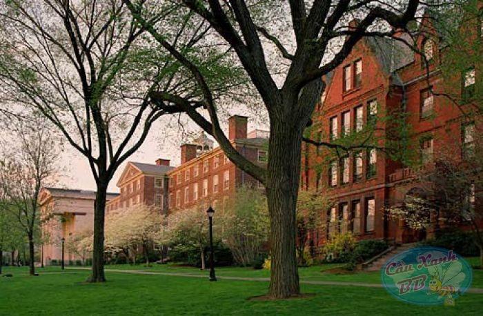 Du học Mỹ, University of Rhode Island