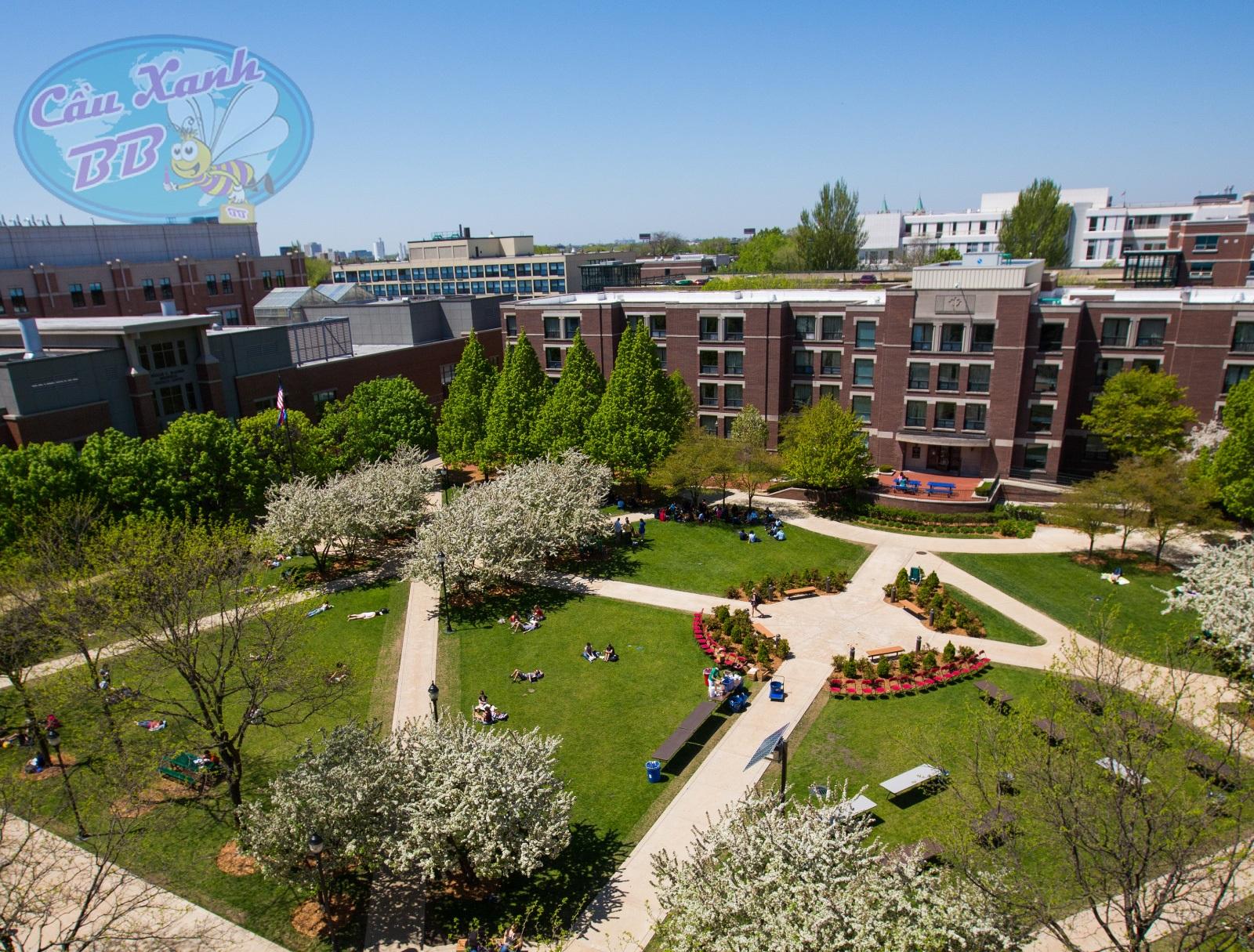 Du học Mỹ tại De Paul University