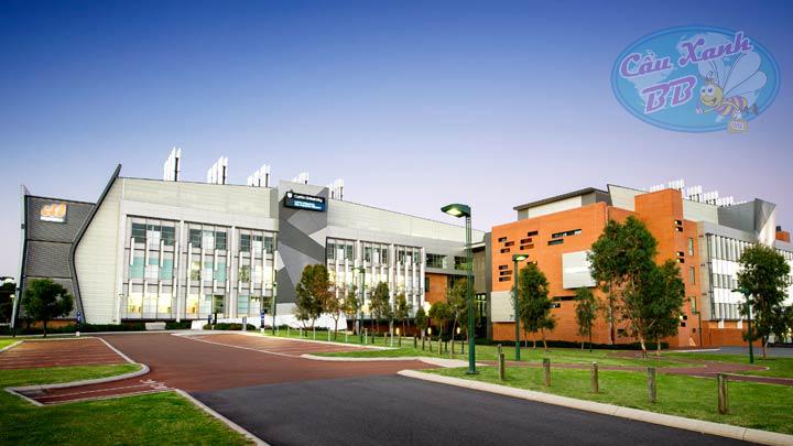 Du học Úc tại đại học Curtin, học bổng 25% cho học sinh giỏi