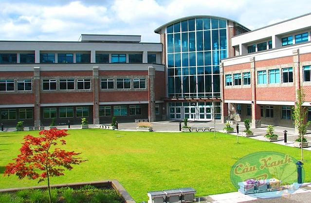 Douglas College, lựa chọn lí tưởng cho du học Canada tại Vancouver