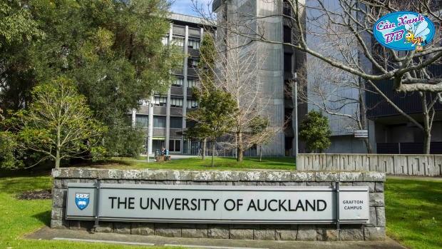 Du học New Zealand, đại học Auckland