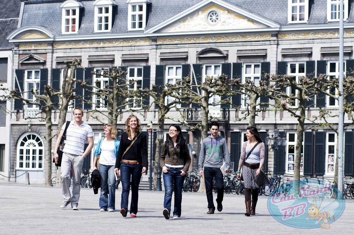 Tại sao nên du học Hà Lan tại ĐH Khoa học Maastricht?