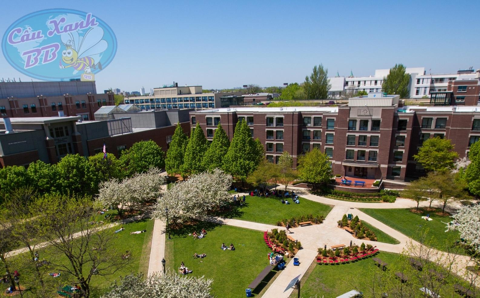Học bổng du học Mỹ đến 23.000 USD/năm tại đại học Depaul và Hartford