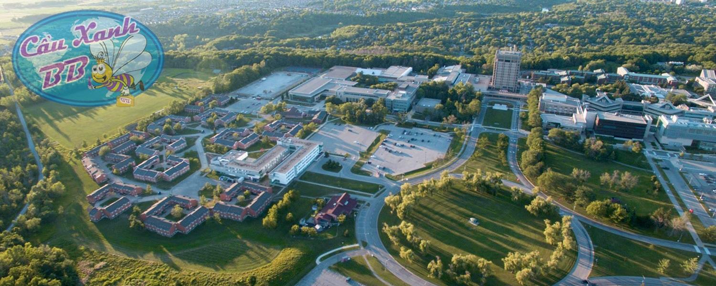 Học bổng du học Canada và thực tập hưởng lương tại Canada