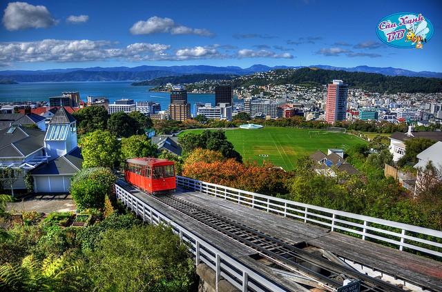 Giáo dục New Zealand từ phổ thông, trung học tới cao đẳng học nghề, học tiếng và đại học