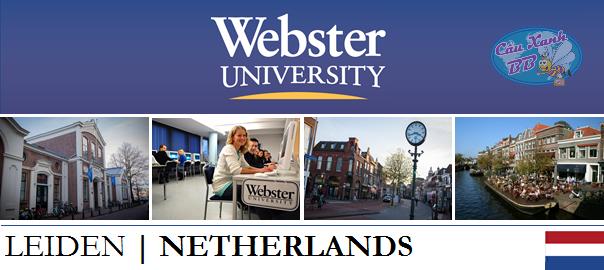 Học bổng du học Hà Lan hấp dẫn từ đại học danh giá Webster Leiden, hàng đầu đào tạo ngành tâm lí, kinh doanh và truyền thông.