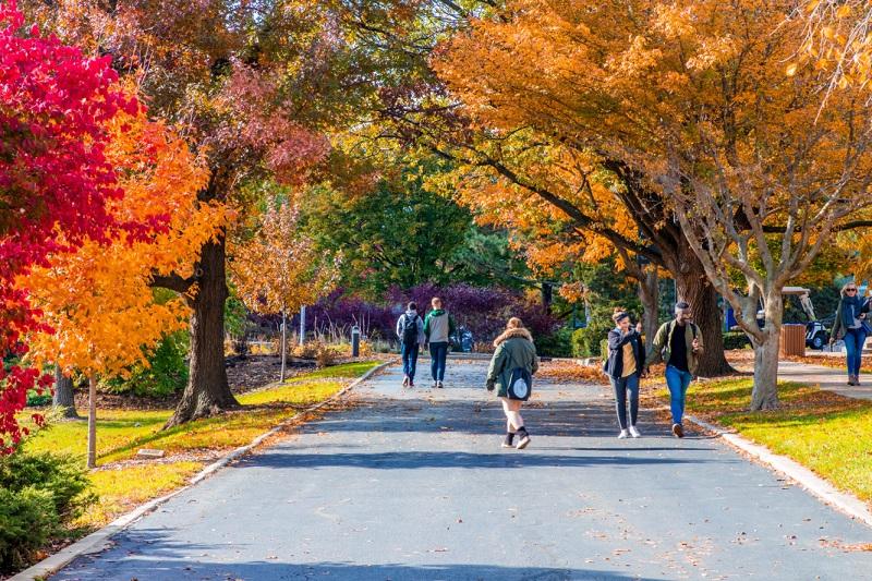 Học bổng lên đến 100.000 đô Mỹ khi du học Mỹ tại Chicago, Đại học Elmhurst