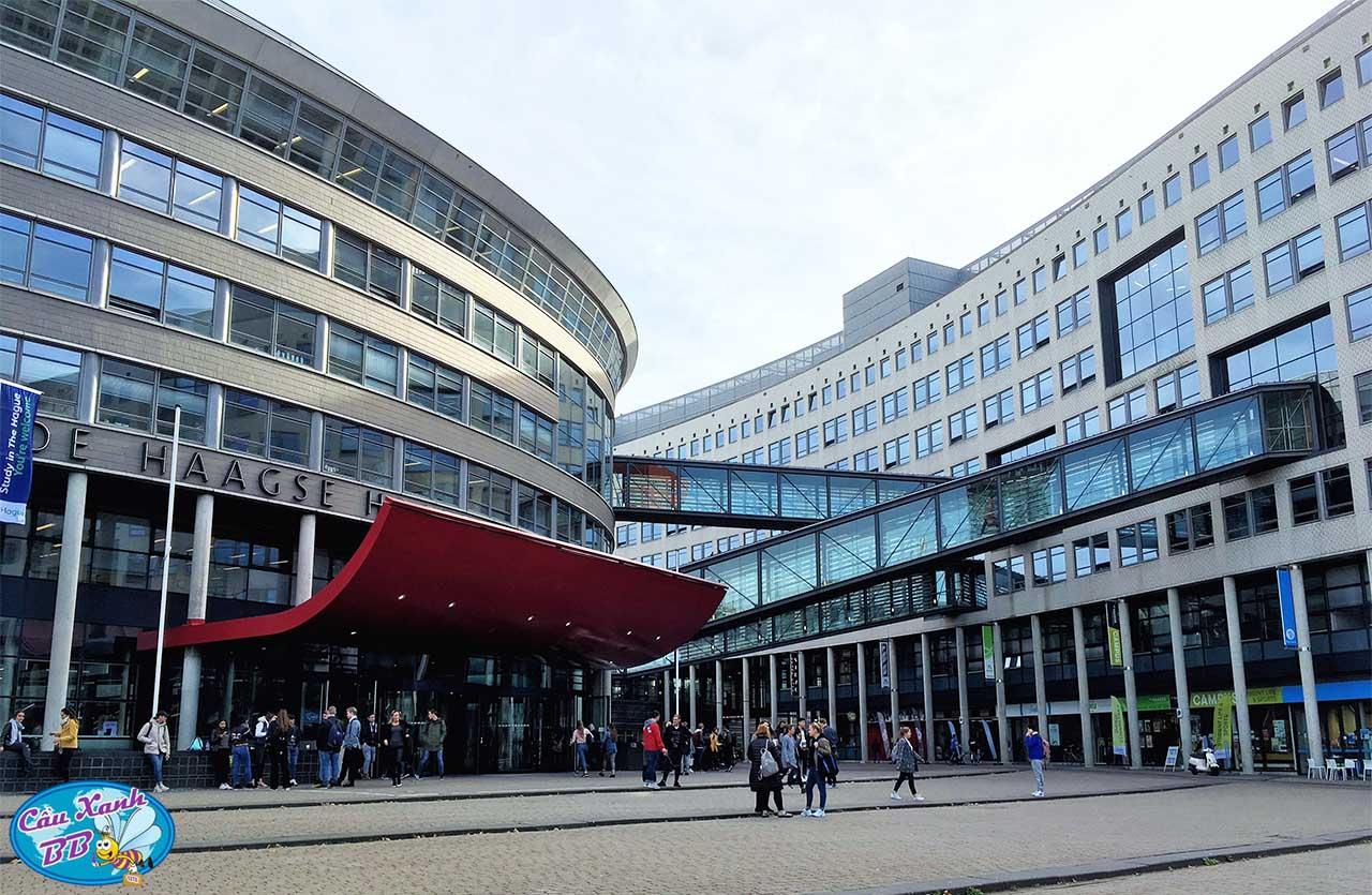 Lựa chọn đại học The Hague để du học Hà Lan