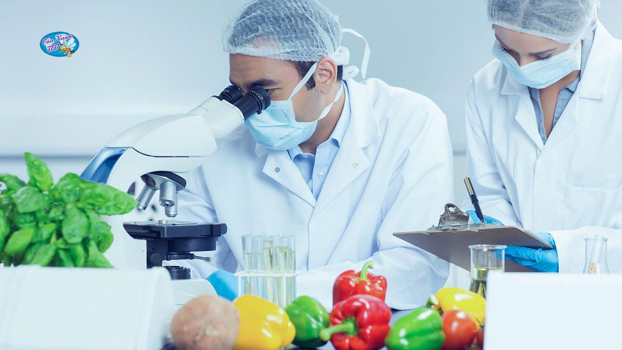 Du học Pháp ngành công nghệ thực phẩm từ A - Z